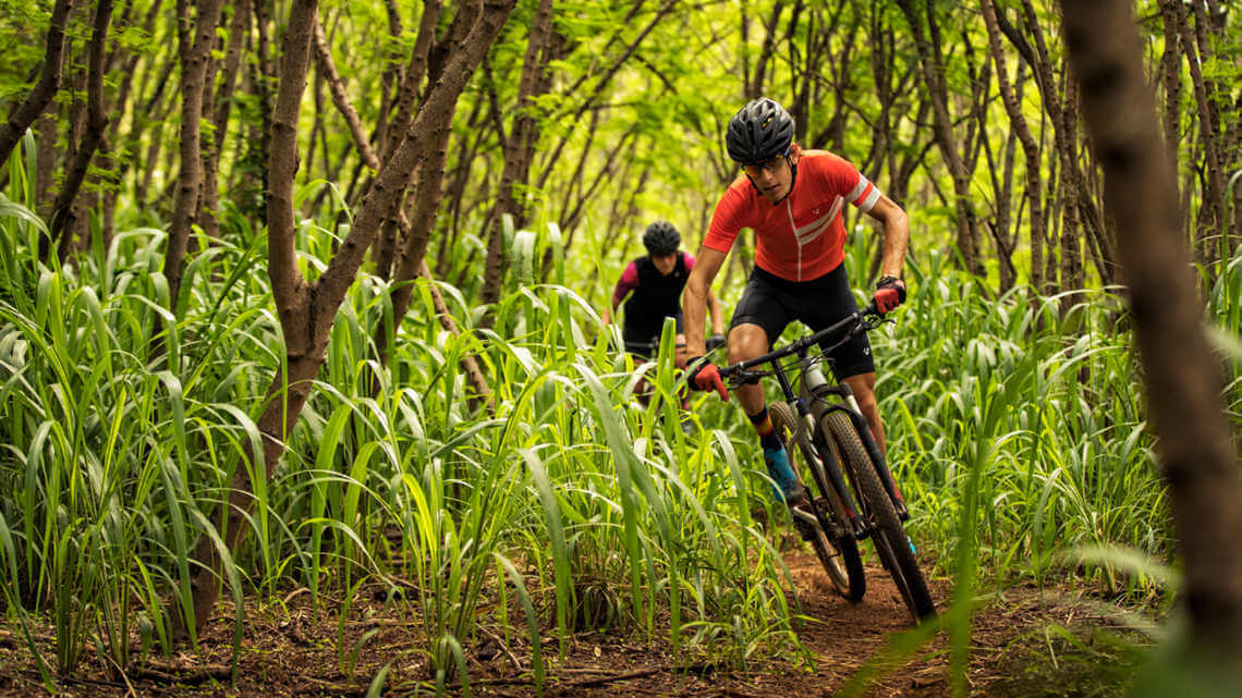 Trek Mountain Bikes Under 1500